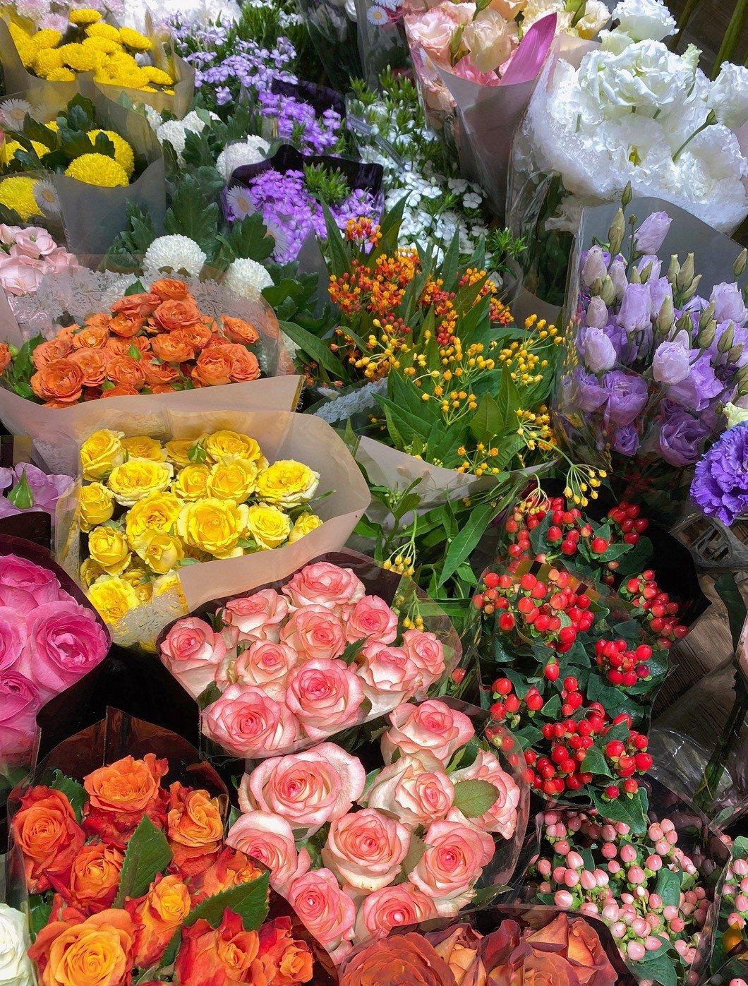 花的图片高清朋友圈背景|浪漫的代表是鲜花