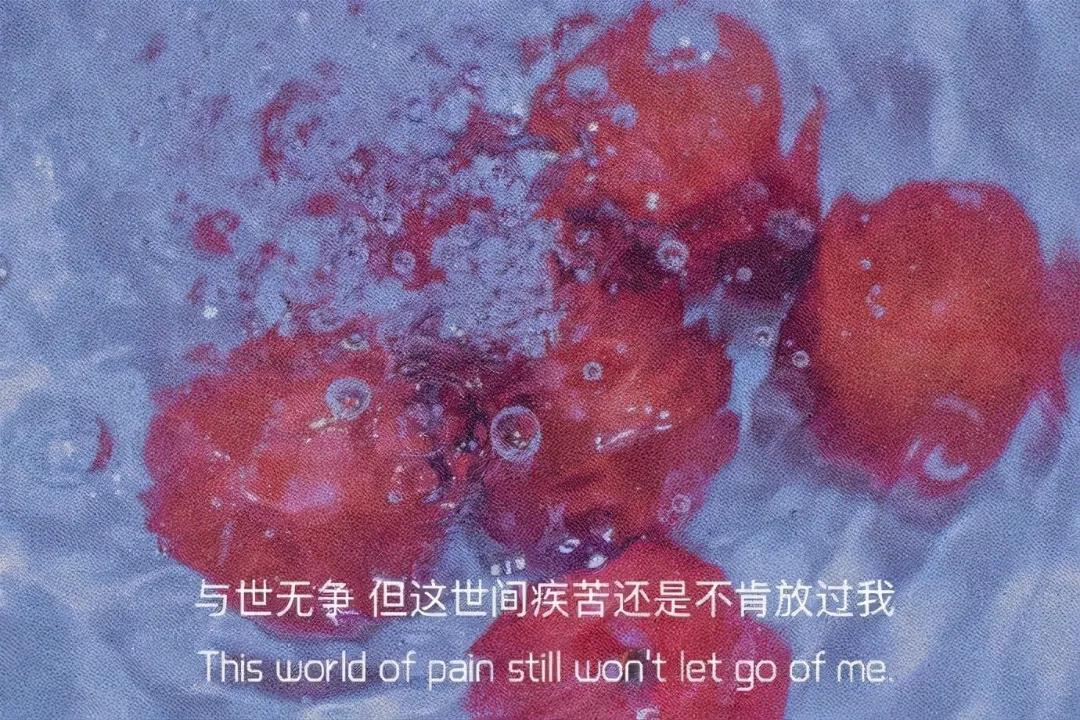 心情很丧时发的感伤带字图片 都怕扑空,都在衡量