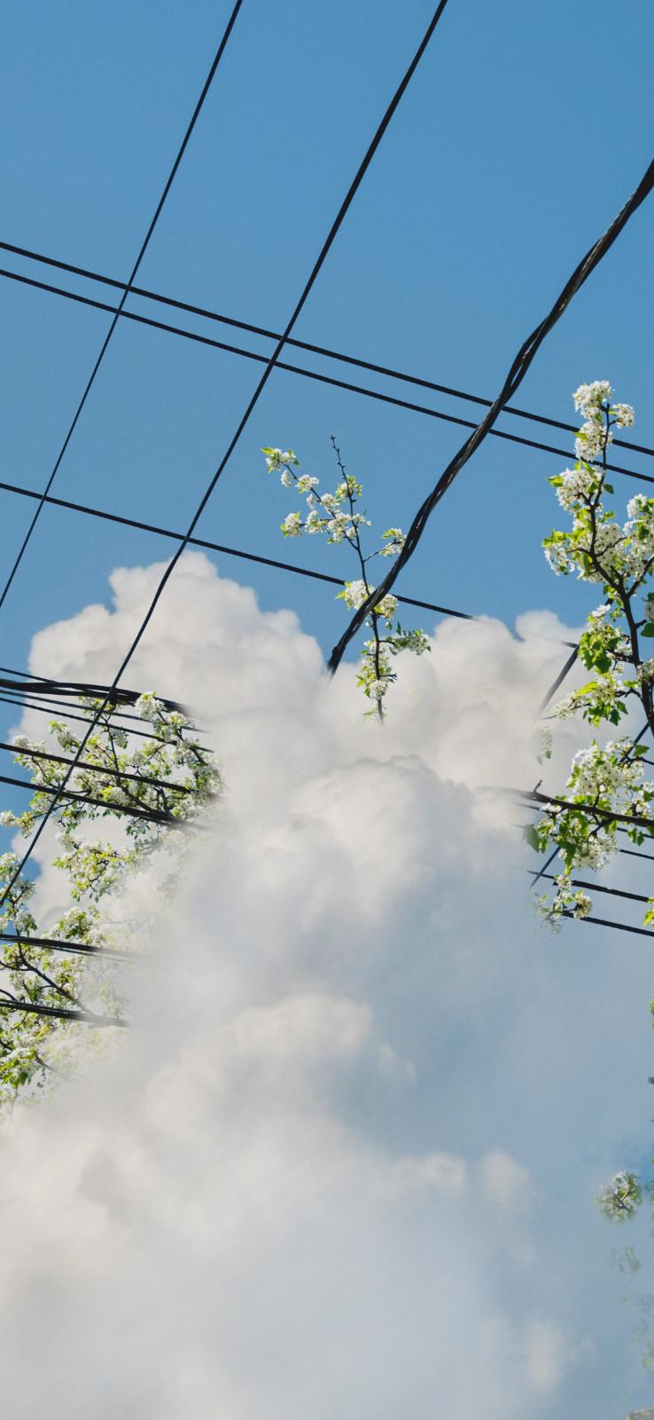 高清风景图|小清新简约的蓝色天空手机壁纸