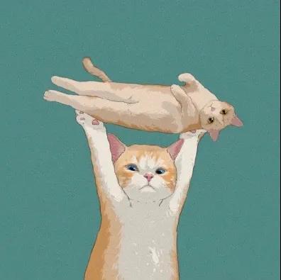 卡通猫咪举双手拿东西的图片头像又萌又有趣