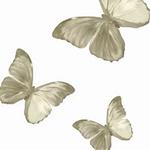 唯美蝴蝶背景简约淡雅,