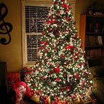 好看圣诞节这天,安静甜