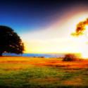 漂亮的初生太阳温