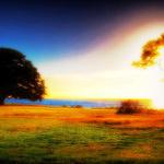 漂亮的初生太阳温暖早安