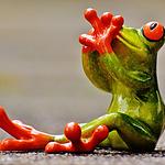 好看有趣的玩具青蛙图片