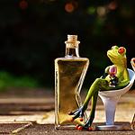 最美青蛙玩具与鸡尾酒放