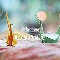 [热门]最暖心的早