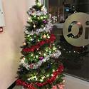 美丽圣诞节圣诞树