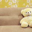 可爱的布偶熊高清