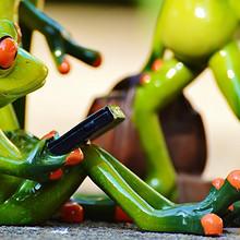 拖着行李去旅游的青蛙玩具高清图片
