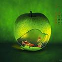 超美艺术月历图片