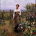 唯美农妇因为辛勤