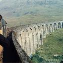 超美在火车上看外