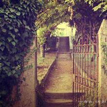 走向幸福美好的道路唯美风