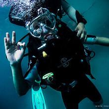 潜水员近距离观察海底生物唯美电脑桌面壁纸图片