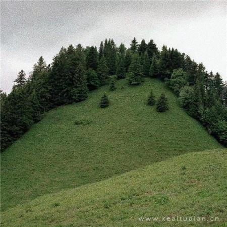 最新绿色清新大自然文艺空间 所有暗示都是我的