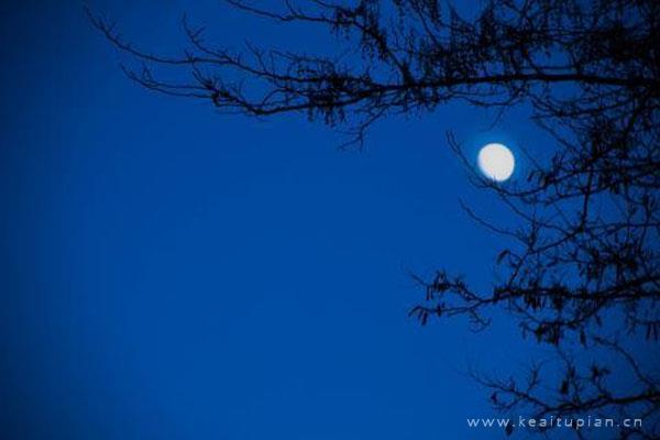 漂亮真实月光夜晚,思念意境头上的月色朦胧让