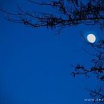 漂亮真实月光夜晚,思念