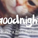精选朋友圈睡前晚安暖心
