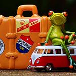 搞笑奇葩的小青蛙玩具高