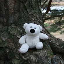 可爱小清新玩具熊温馨图片壁纸