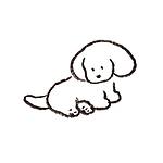 狗组图 简笔画头像图片