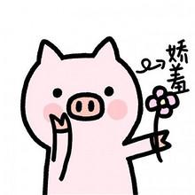 十一月最新卡通可爱小猪猪