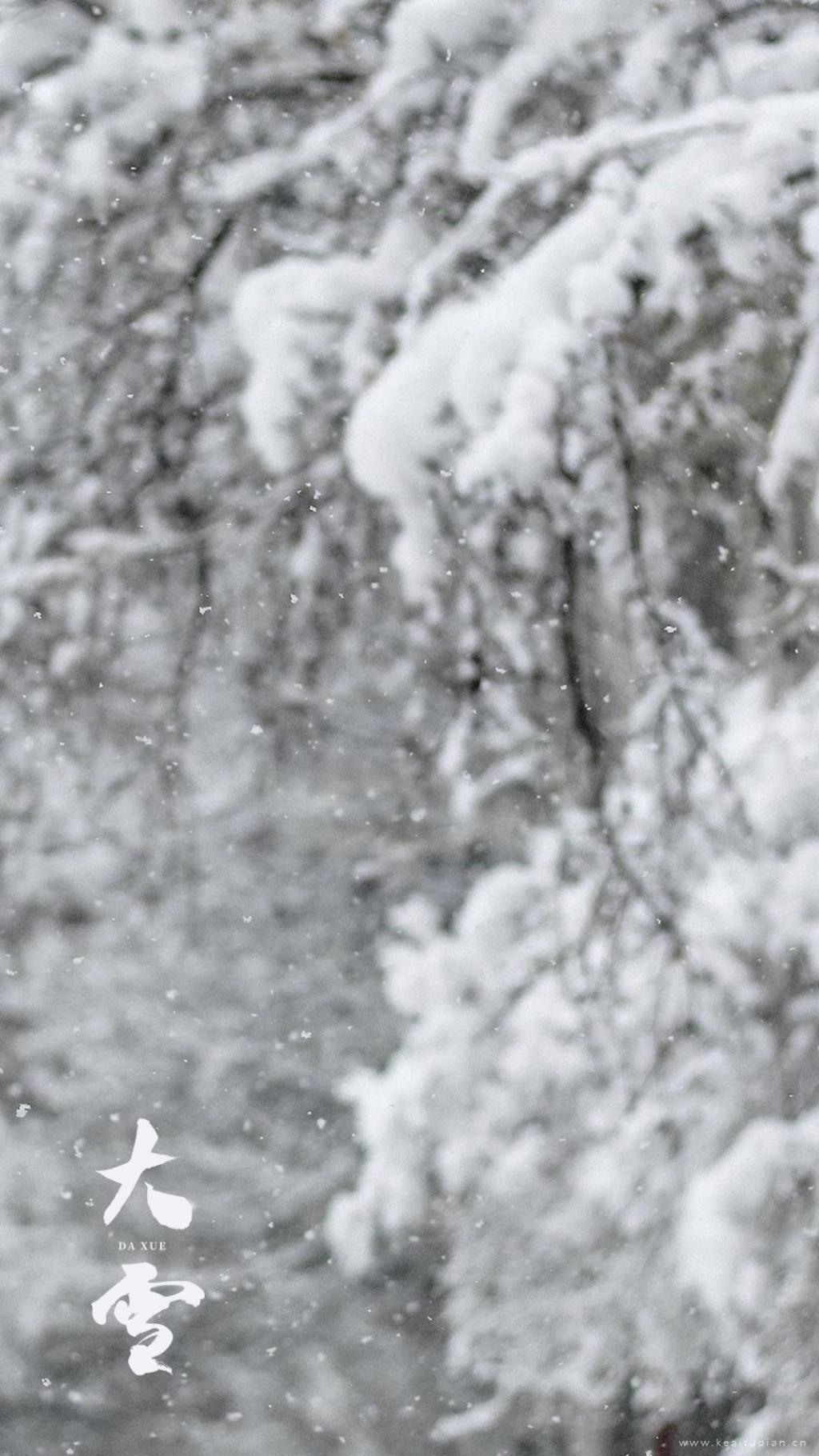 最后一个月里,雪花会来见你·唯美大雪风景图