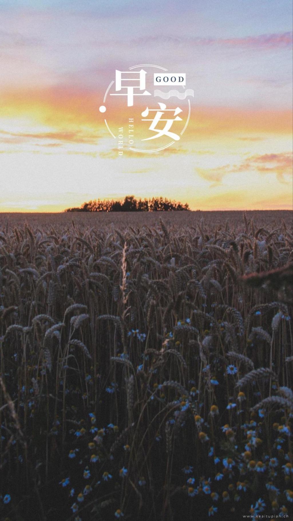 早安田园风景唯美手机壁纸图片