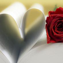 浪漫情人节精选书本爱心旁的红色玫瑰图片