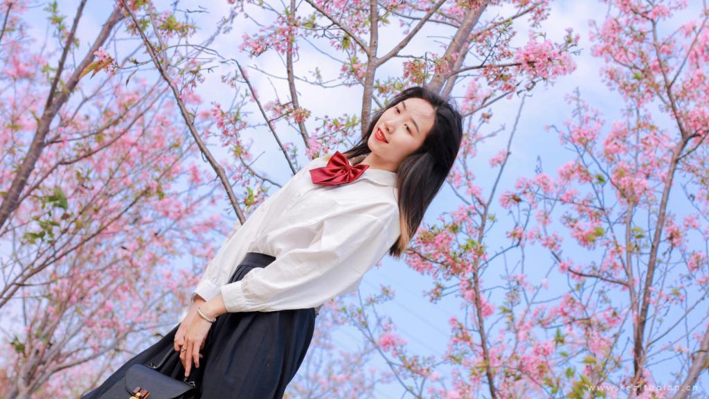 樱花树下的学生少女恬静唯美写真图片