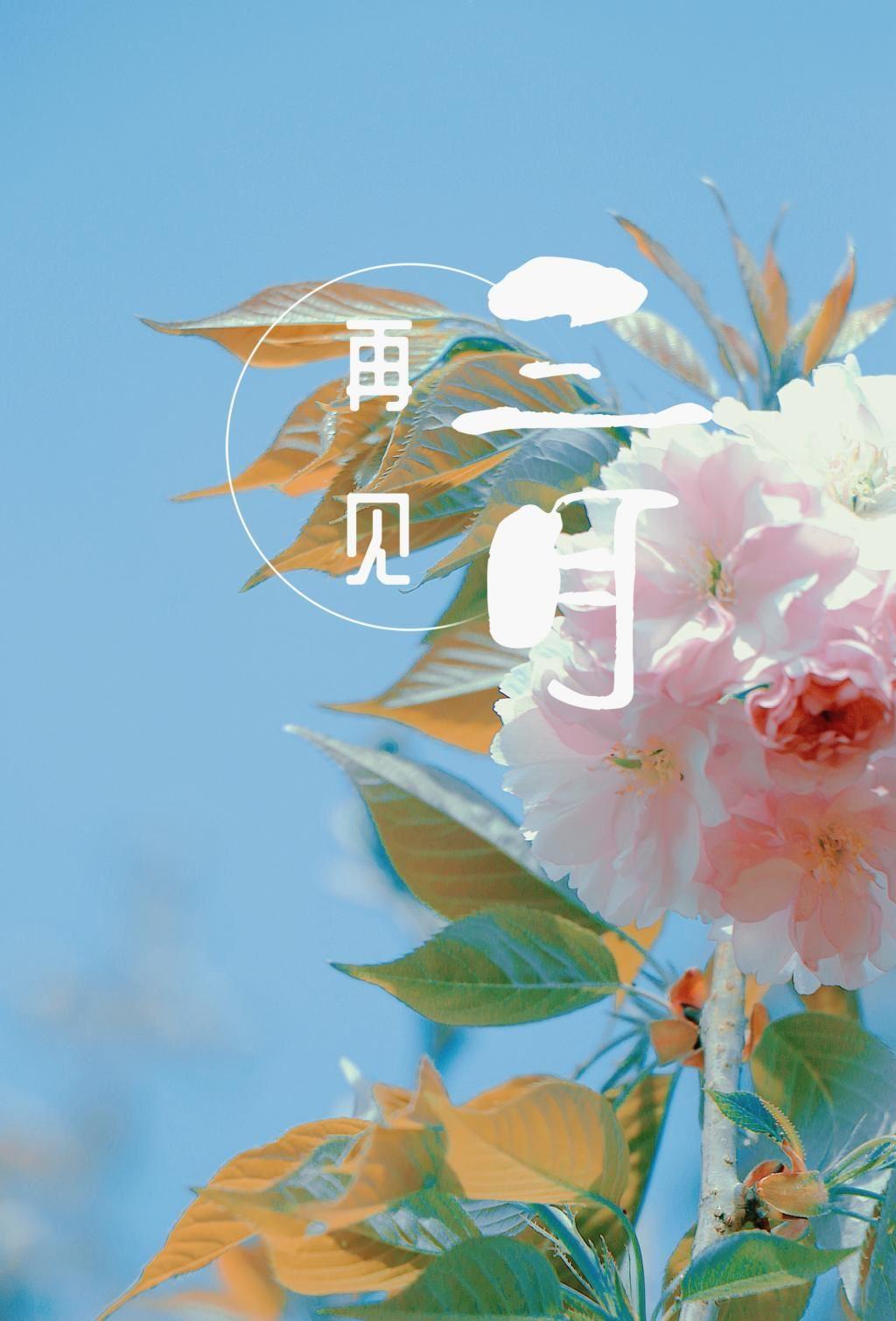 万物可爱的三月再见,唯美小清新的粉色花朵图