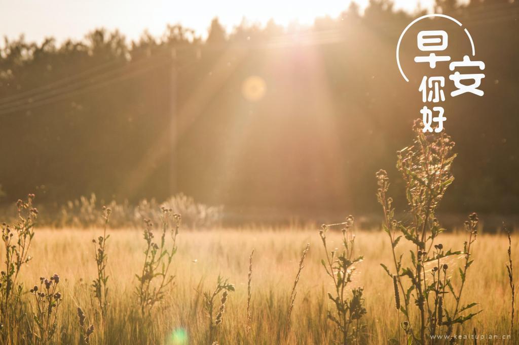 温暖阳光四溢的早安唯美壁纸图片