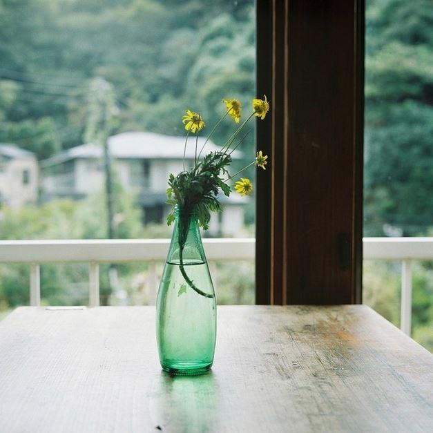 透明瓶子里插着几多小花-生活中的意境图片