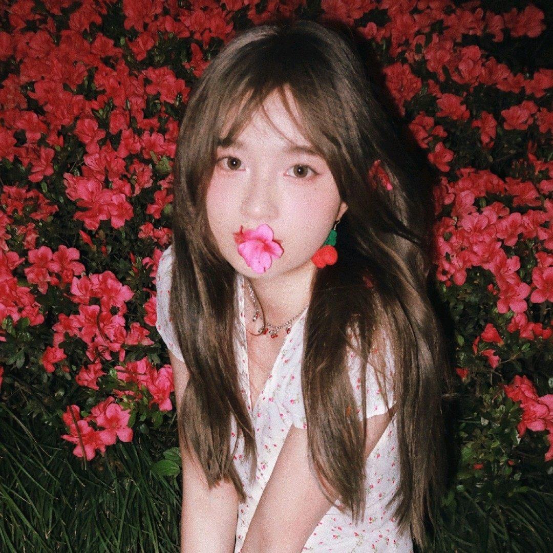 甜酷女生唯美花朵深夜迷人气质微信头像图片