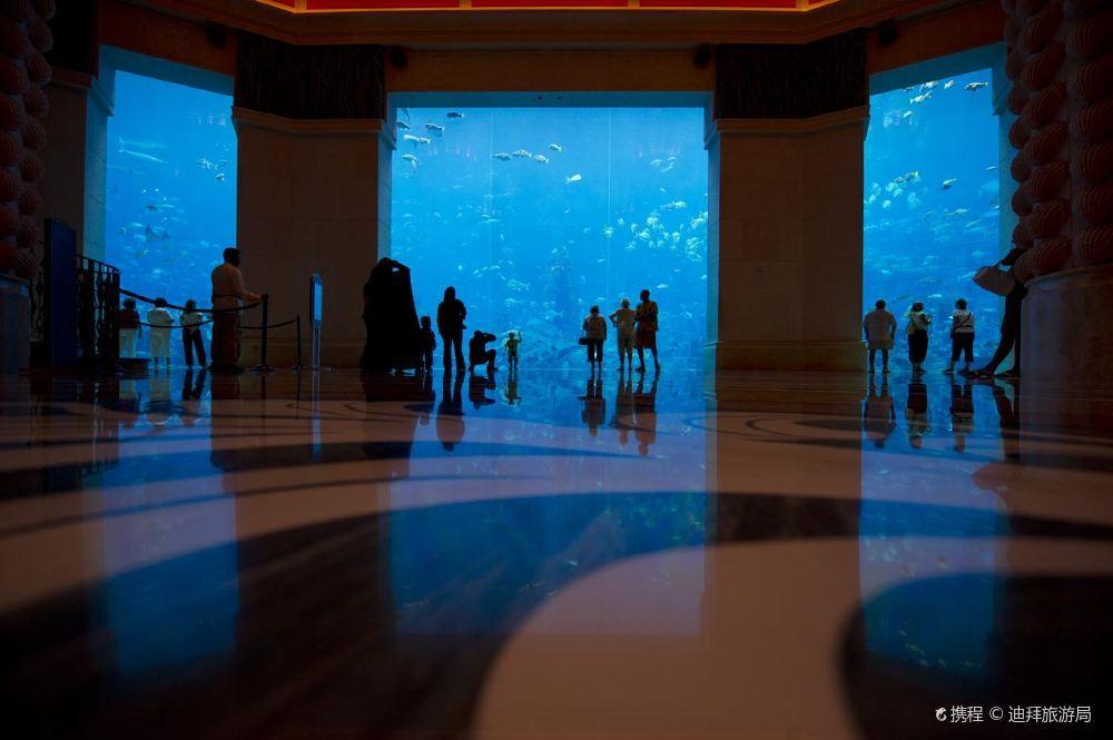迪拜失落的空间水族馆风景高清壁纸美图