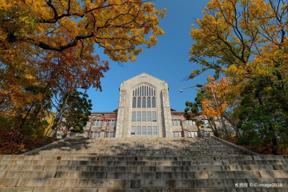 首尔梨花女子大学风景壁纸图片