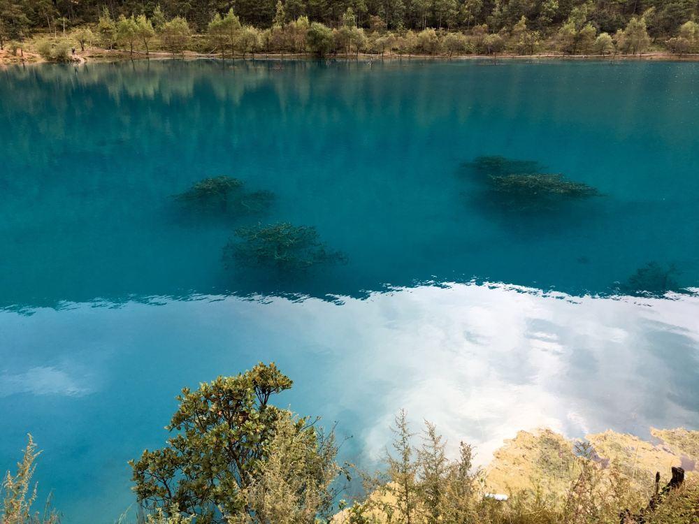 宁波月湖公园旅游景点真实风景照片