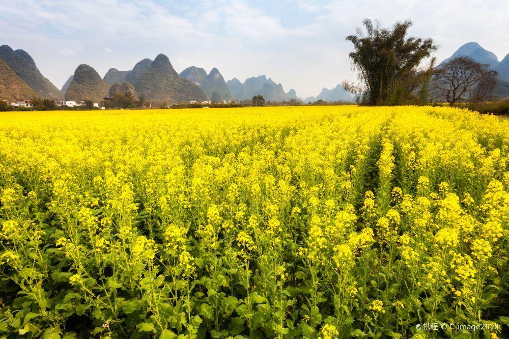 桂林十里画廊旅游风景唯美照片大全