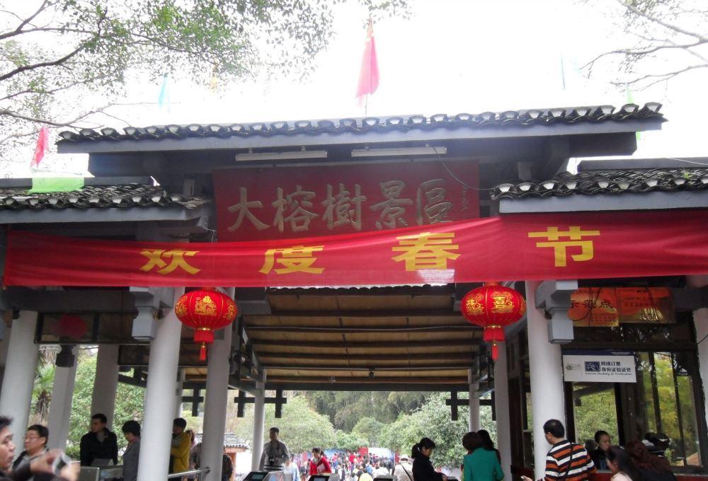 桂林大榕树旅游景点高清风景图片