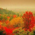美丽的大自然四季风景图