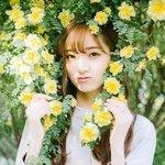 蔷薇下的清纯美女图片