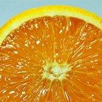 新鲜可口橙子高清手机壁