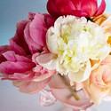 花的唯美主题桌面