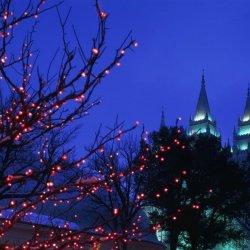 唯美夜晚雪景高清手机壁纸图片