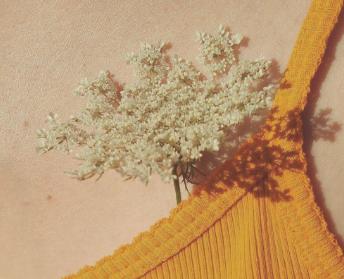 八月专享图片感叹秋天即将到来的唯美配图
