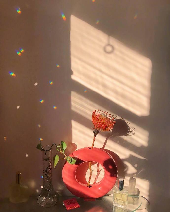能让人心情阳光感受生活美好的图片